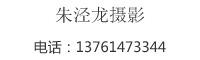 朱泾龙万博manbetx手机客户端