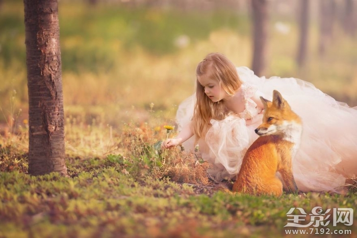 与动物为伴 孩子梦想中的奇幻童话世界