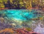 浸在翡翠湖温泉