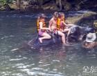独木舟在AO TALEN和大象野生