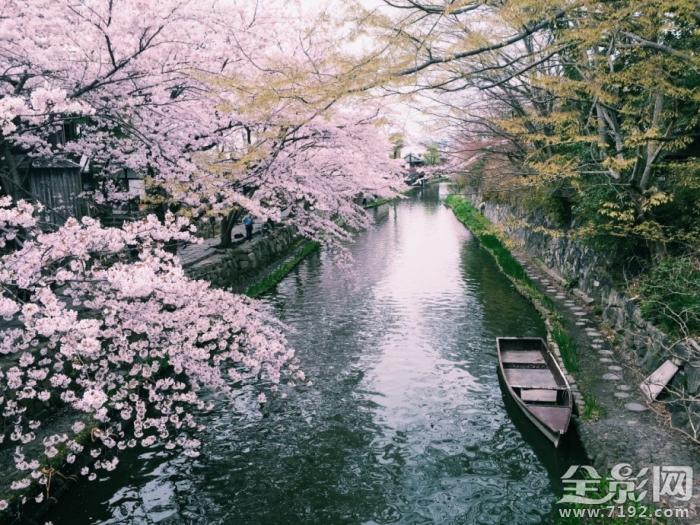 广东三月风景图片大全