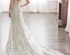 婚纱趋势预测