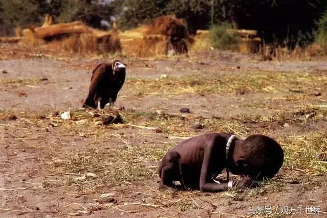 直击人类有相机记录以来最震撼人类灵魂的10张照片,看完都泪崩了