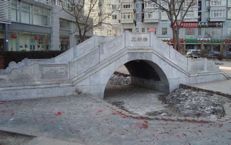 北新桥锁龙井
