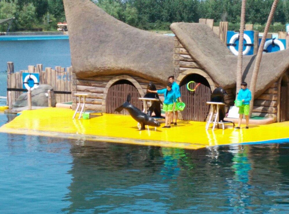 乐岛欢乐海洋公园