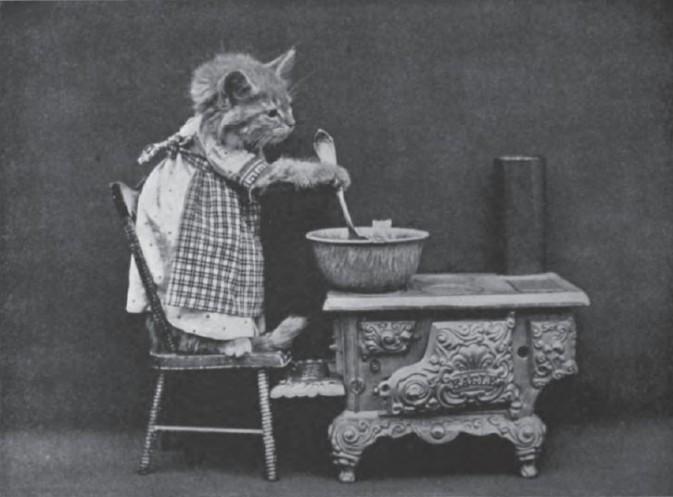 拟人摄影:来自上世纪的超萌的动物