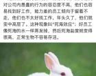 马云、周鸿祎等大佬为何都要清退小白兔员工,小白兔必死无疑吗?