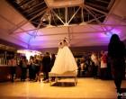 保定优乐娱乐手机版摄影蓝鸟婚礼展示提供剪切灵感和创造力