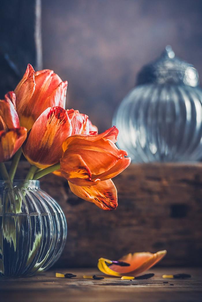 静物摄影,鲜花一生的故事