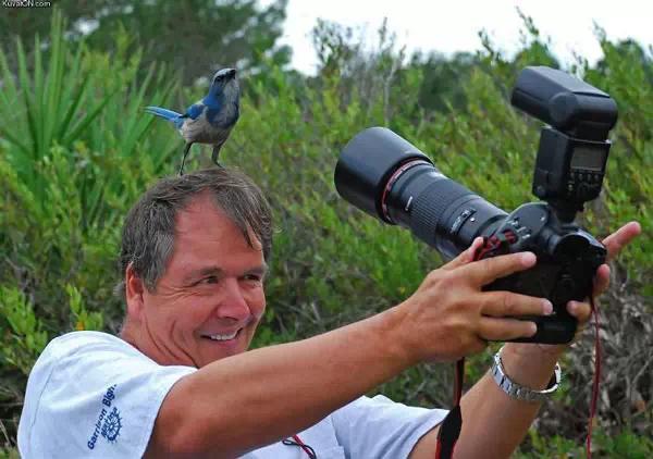 摄影师们的疯狂执行力