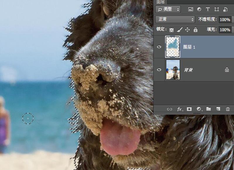 利用快速编辑工具修正照片