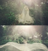 摄影师-阿峰的作品