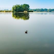 潍坊湿地公园