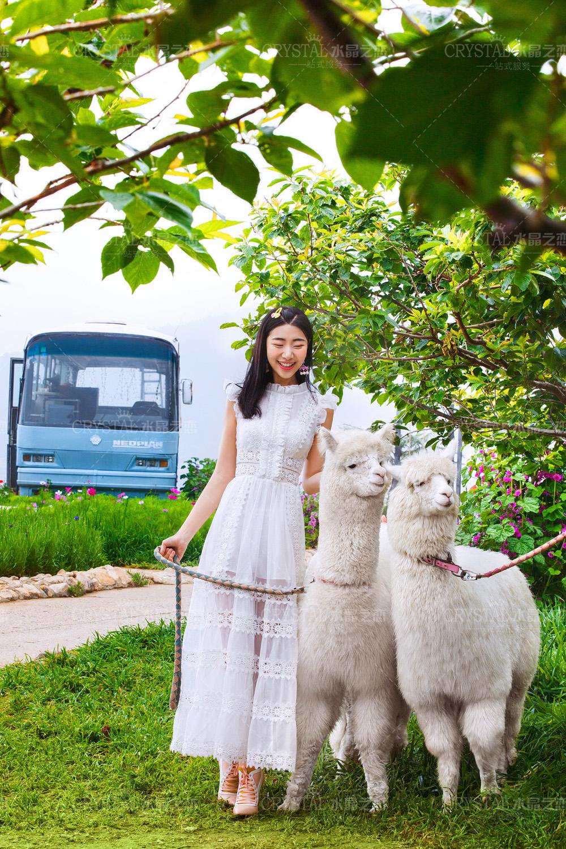 水晶之恋婚纱摄影青岛旅拍