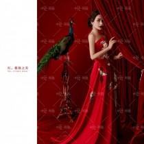 中国红孔雀